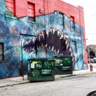 Shark Graffiti